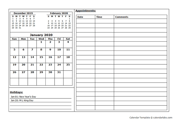 2020 Monthly Appointment Calendar - Free Printable Templates in Diary Template Printable Times Appointment Image