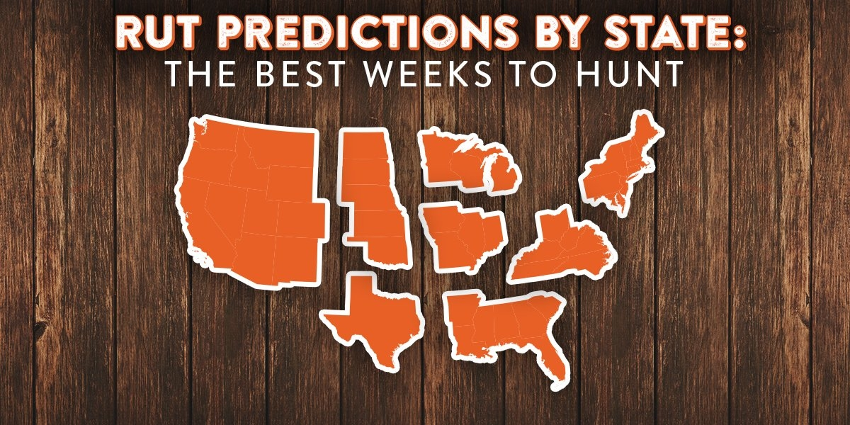 Data Driven State-By-State Rut Predictions For 2018 for Whitetail Movement Calander For Iowa Photo