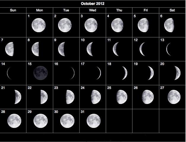 Deer And The Moon - Midwest Whitetail intended for Deer Movement Moon Phase Calendar Graphics