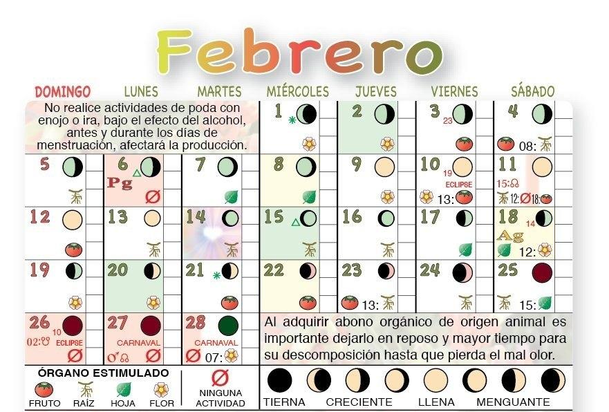 Fases Lunares Calendario Agricola Lunar | Calendario within Calebdario Agricola