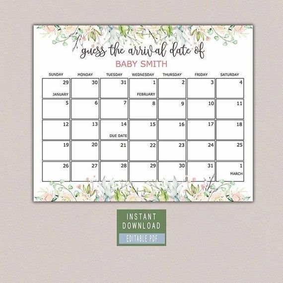 Guess Baby Birthday Calendar, Guess The Due Date Game, Peach for Due Date Guess February Calendar