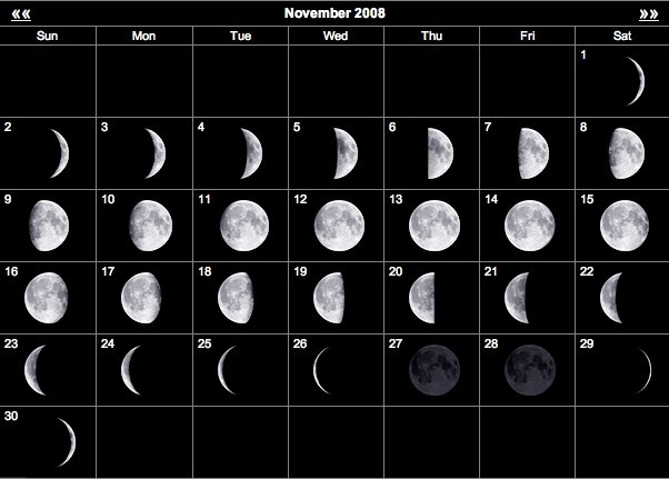 Hunting The Moon Phase – Does It Really Make A Difference? | pertaining to Deer Movement Moon Phase Calendar