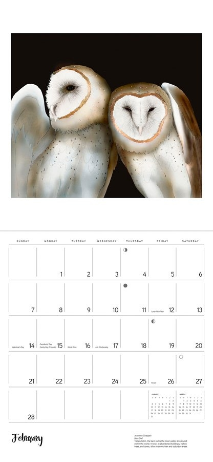 Owls: Jeannine Chappell 2021 Wall Calendar for Wise Owl Calendars Image