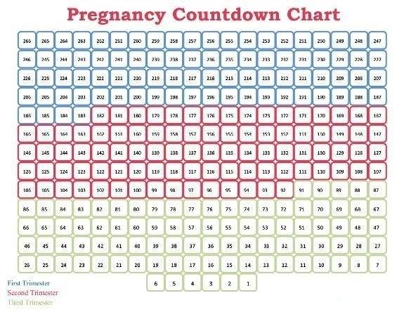 Pin On Printable Free Calendar Templates pertaining to 90 Day Countdown Blank Photo