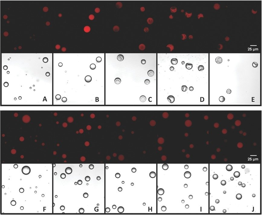 """Suction Caps"""": Designing Anisotropic Core/shell inside Open Vial Exp Calander"""