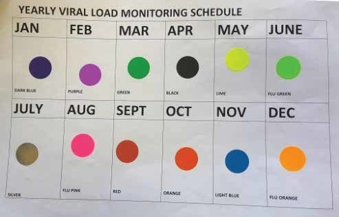 A) Monthly Colour-Coded Vl Sticker Chart; (B) Patient Charts regarding Monthly Color Coded Schedule