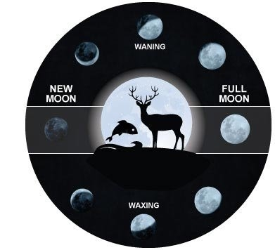 Acurite Blog - Moon Phases Impact On Hunting And Fishing throughout Lunar Deer Movement Chart Graphics