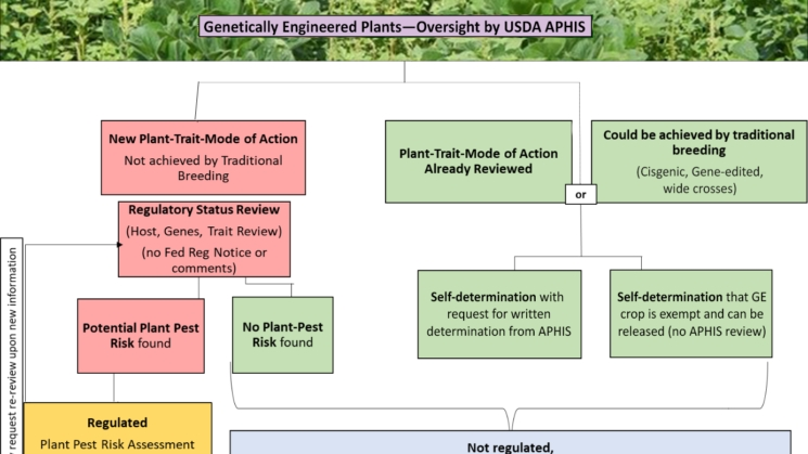 Biotechnology Oversight Gets An Early Make-Overtrump'S within Usda Aphis Pay Period Image