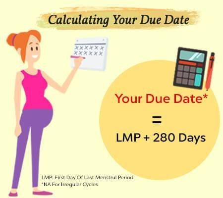 Due Date Calculator| Calculate Eddconception Date in Baby Due Date Calender