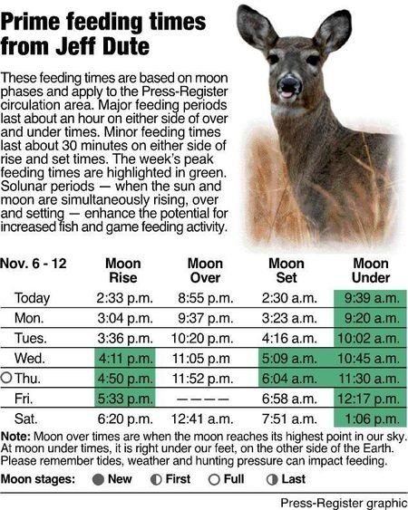 Feeding-Times Basics To Get The Most Out Of The Moon'S for Deer Movement Charts Photo