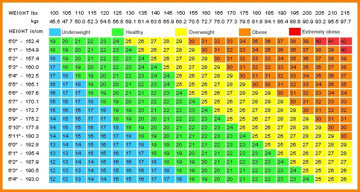 Printable Bmi Chart | Room Surf with 90 Day Calculator Chart Printable