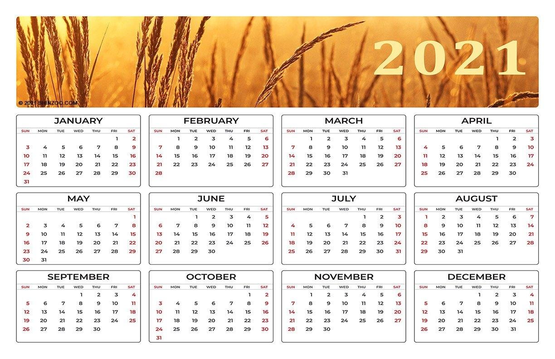Printable Calendar 2021 Yearly 11X17   Printable Calendar 2021 with regard to Google 2021 Calendar Printable