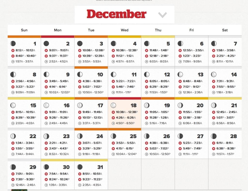 Rut Forecast 2021 | Calendar Printables Free Blank with Calendar 2021 Zile Lucratoare Image